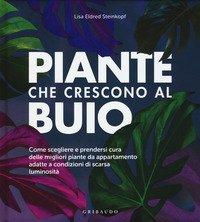 Piante che crescono al buio. Come scegliere e prendersi cura delle migliori piante d'appartamento adatte a condizioni di scarsa luminosità